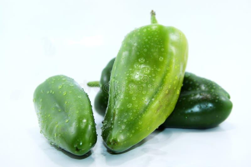 Weißer Hintergrund drei süßer grüner Paprikas lizenzfreie stockbilder