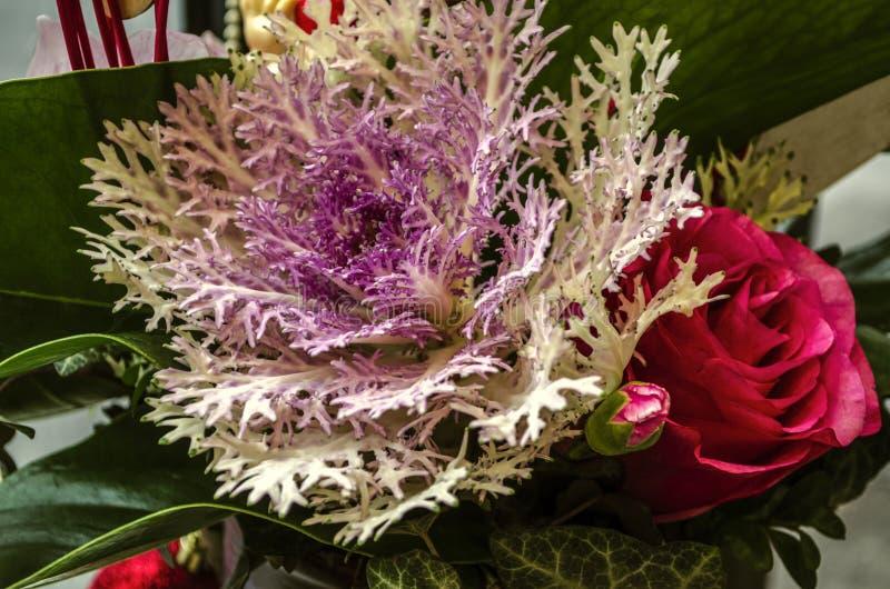 Weißer Koralle-förmiger Kohl mit einer roten Rose und einer ungeöffneten Knospe der roten Gartennelke gestaltet mit Efeu und groß lizenzfreies stockfoto