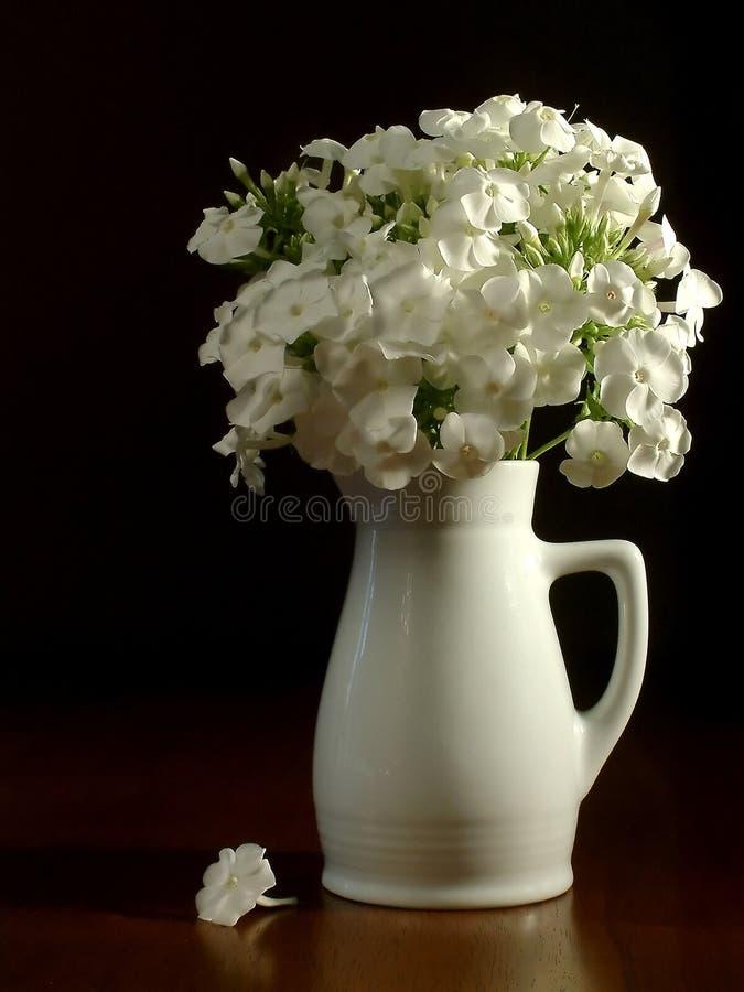 Weißer Krug u. Blumen lizenzfreies stockbild