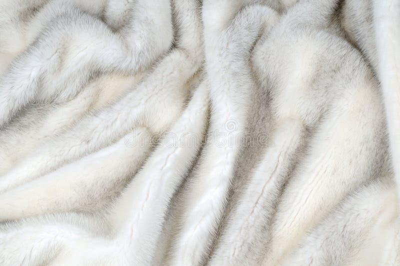 Weißer Pelznerzhintergrund stockfotos