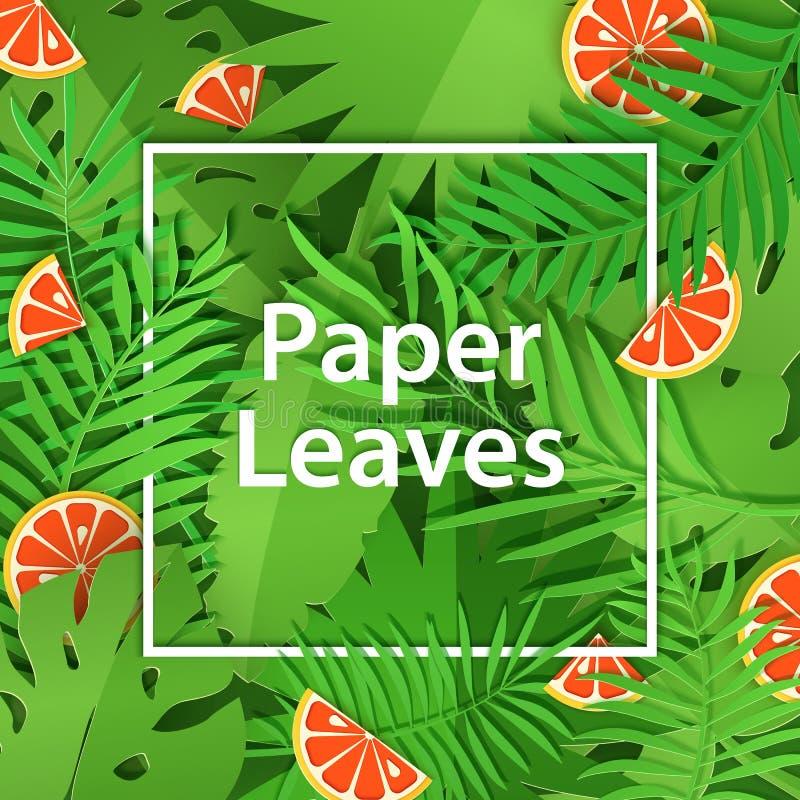 Weißer Rahmen des Papierschnittes mit schwerer Laub- und Zitrusfruchtpampelmuse Quadratische Rahmenlüge auf grünen Dschungelblätt vektor abbildung