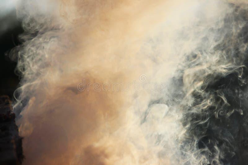 Weißer Rauch vom Feuer, in dem nasse Bretter und Sägemehl liegen lizenzfreie stockbilder