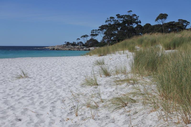 Weißer Sandstrand in der Bucht von Feuern Tasmanien Australien stockbilder