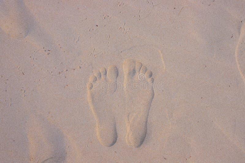 Weißer Sandstrand mit Kennzeichen des bloßen Fußes im Sonnenaufganglicht Draufsicht des Sandstrandes lizenzfreie stockbilder