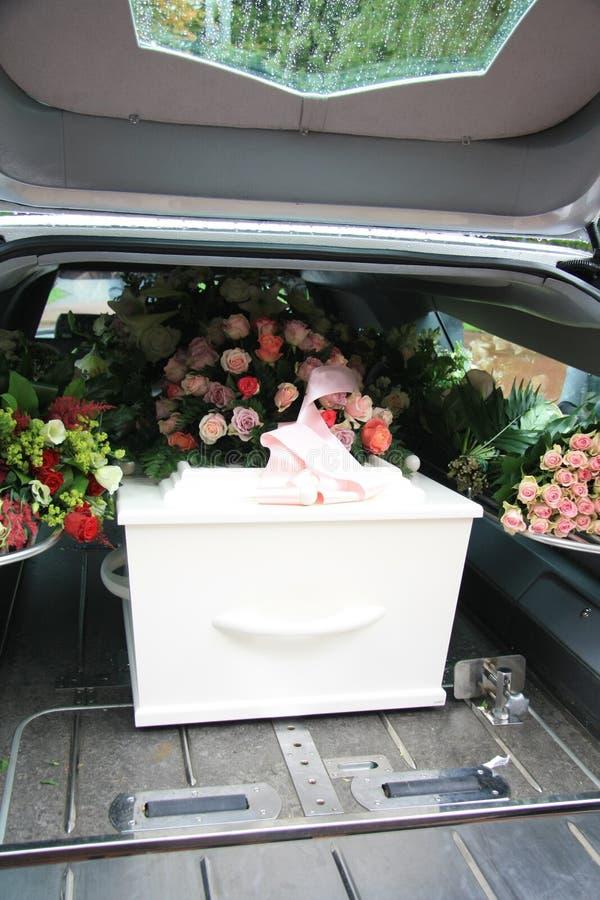 Weißer Sarg in einem grauen Leichenwagen stockbild