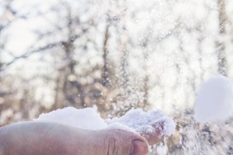 Weißer Schnee auf einer Hand in einem Winterwald lizenzfreies stockbild