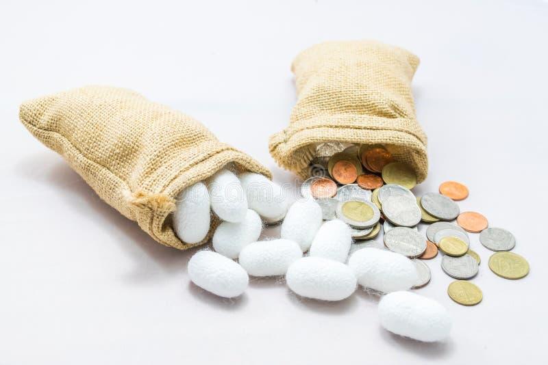 Weißer silk Kokon stockfotos