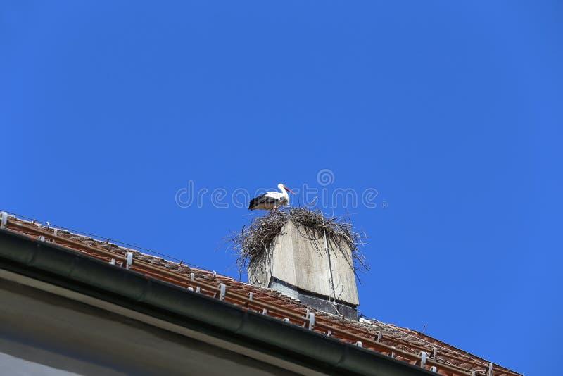 Weißer Storch machen ein Nest auf Kirchenkamin stockfotografie