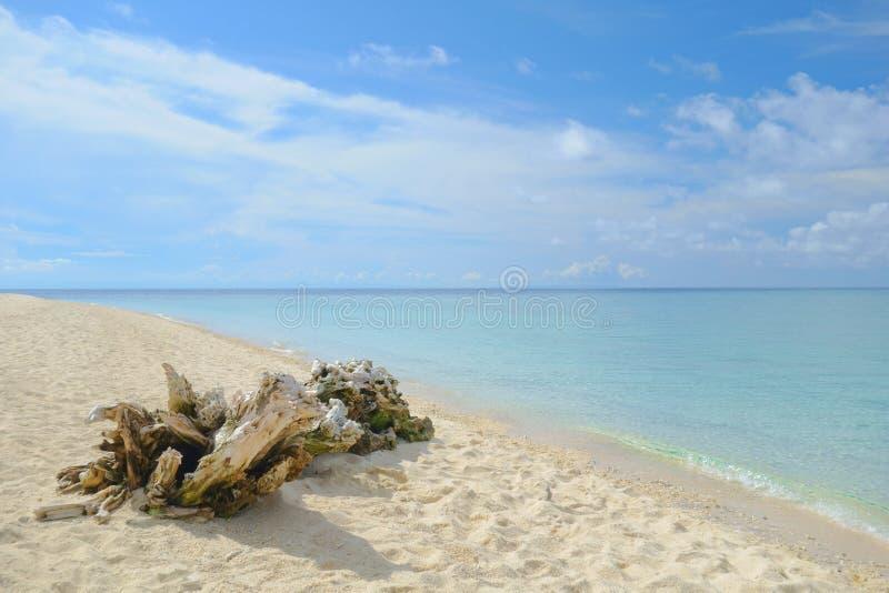 Weißer Strand Philippinen lizenzfreie stockfotos