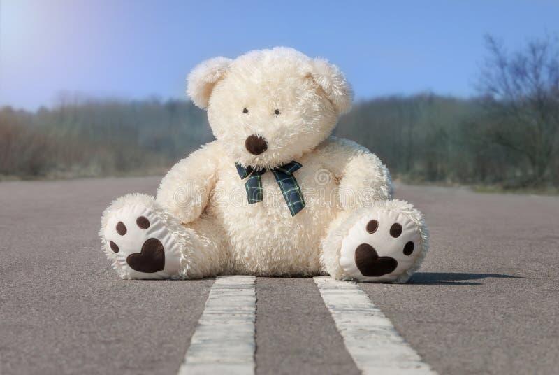 Weißer Teddybär, der mitten in der Straße sitzt lizenzfreies stockfoto