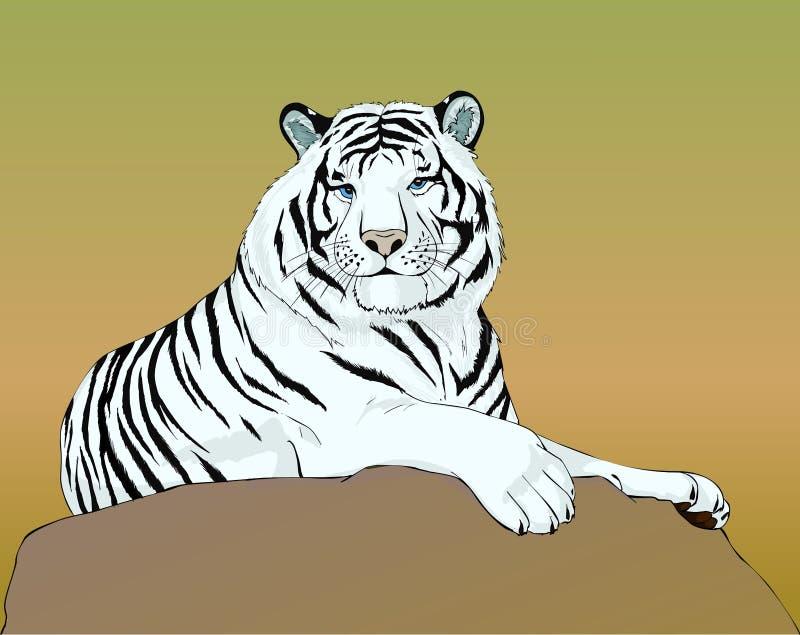 Weißer Tiger liegt auf dem Stein vektor abbildung