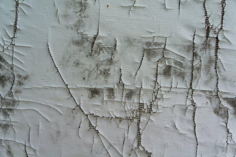 weißer Wandbeschaffenheitssprung stockfotos
