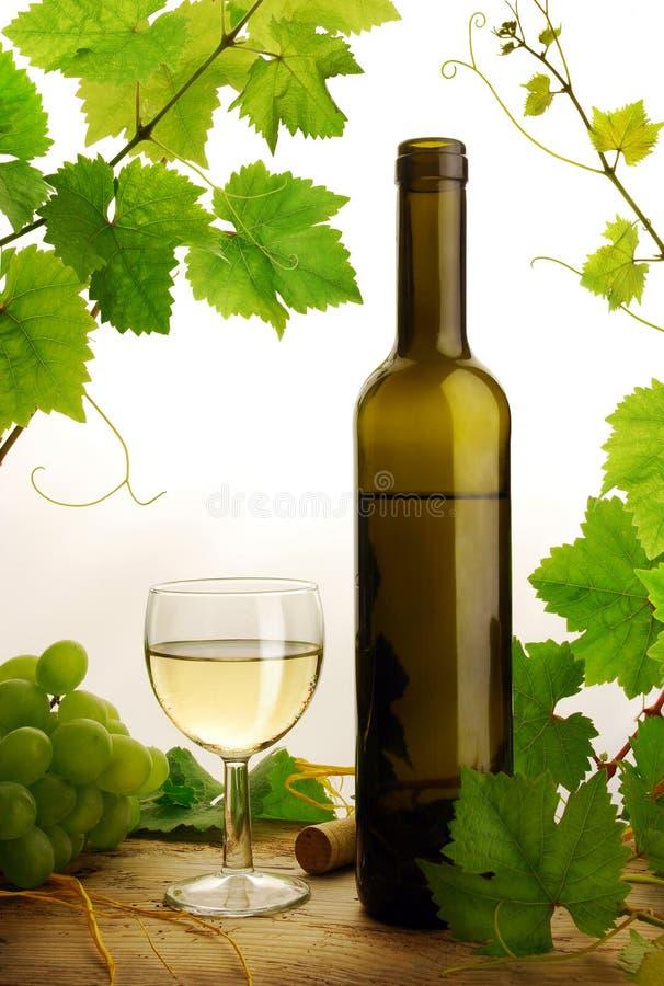 Weißer Wein auf weißem Hintergrund stockfoto