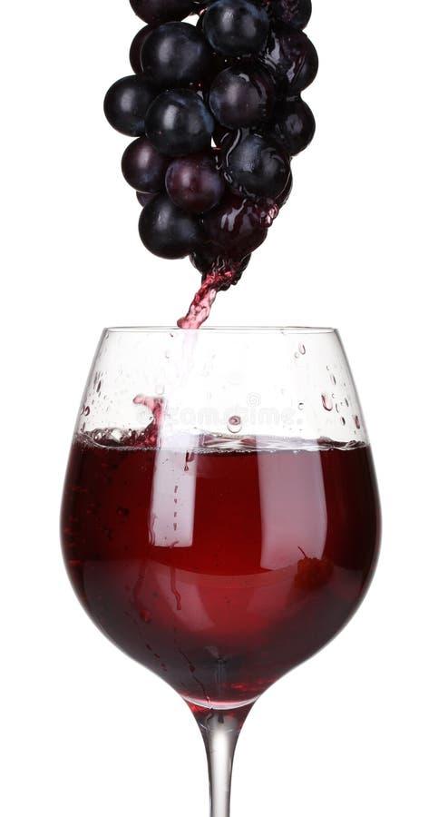 Weißer Wein, der in Glas und in Trauben gießt lizenzfreies stockbild