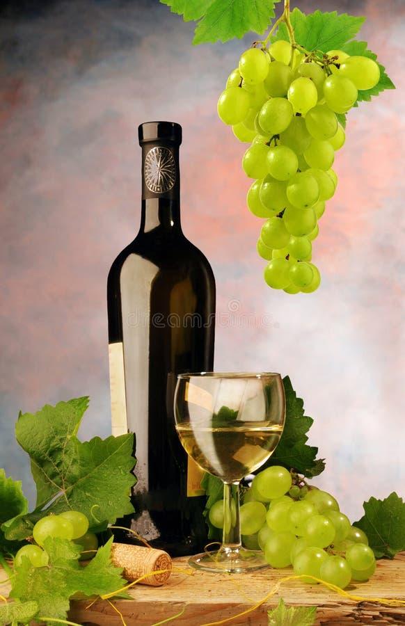 Weißer Wein und frische Trauben stockfoto