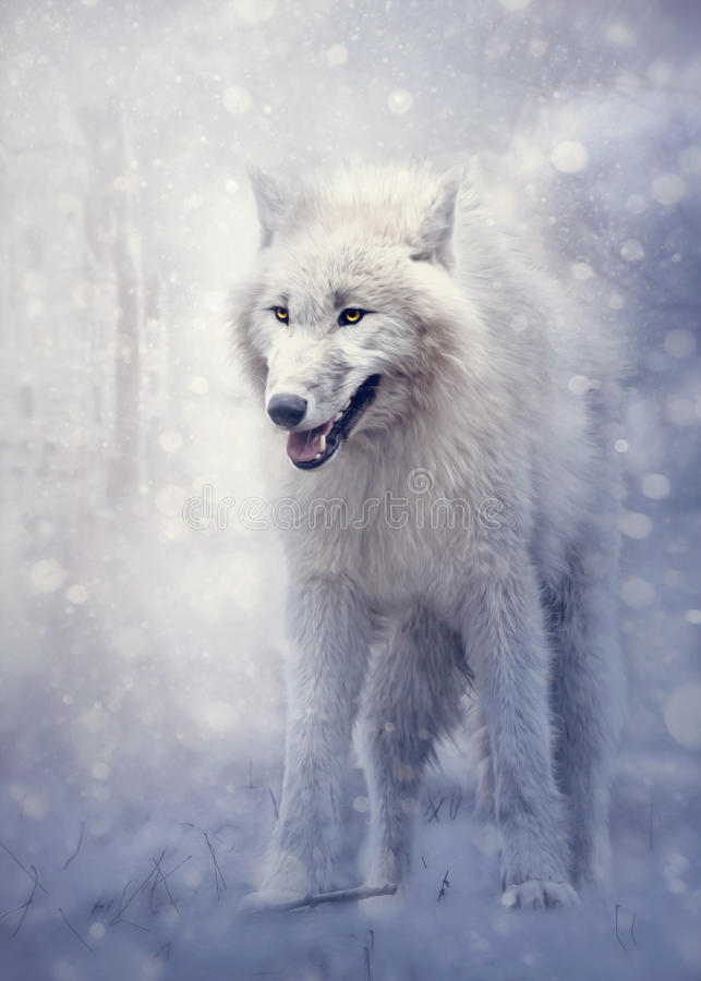 Weißer Wolf im Wald lizenzfreies stockbild