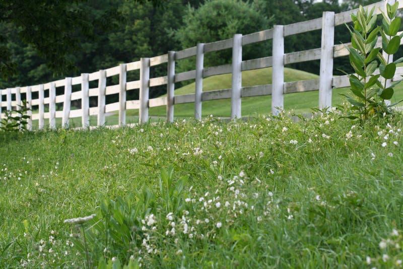 Weißer Zaun stockbild