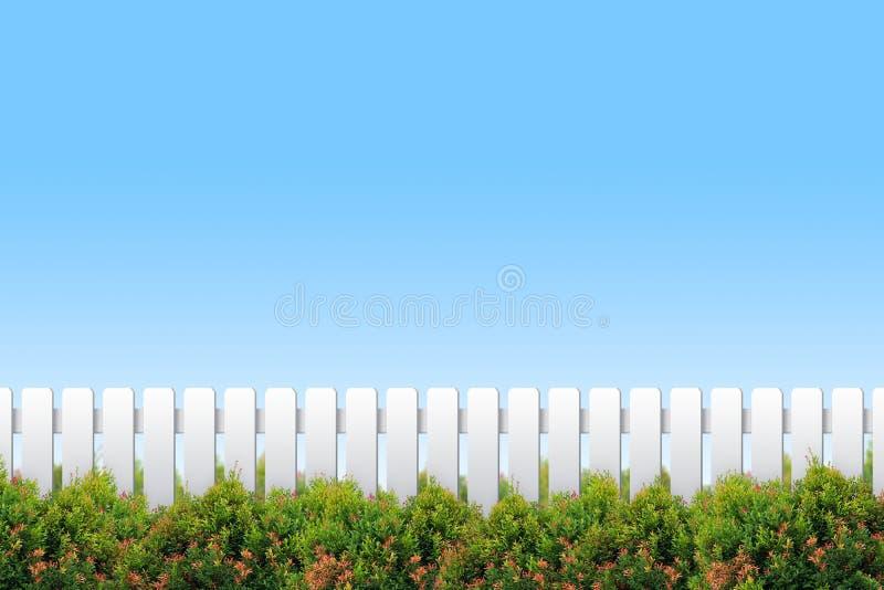 Weißer Zaun und Sträuche stock abbildung