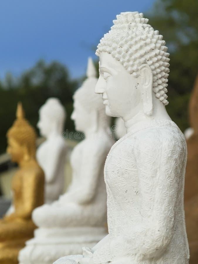 Weißes Buddha-Bild stockbild