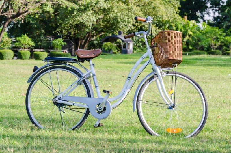 wei es fahrrad mit korb im park stockfoto bild von. Black Bedroom Furniture Sets. Home Design Ideas