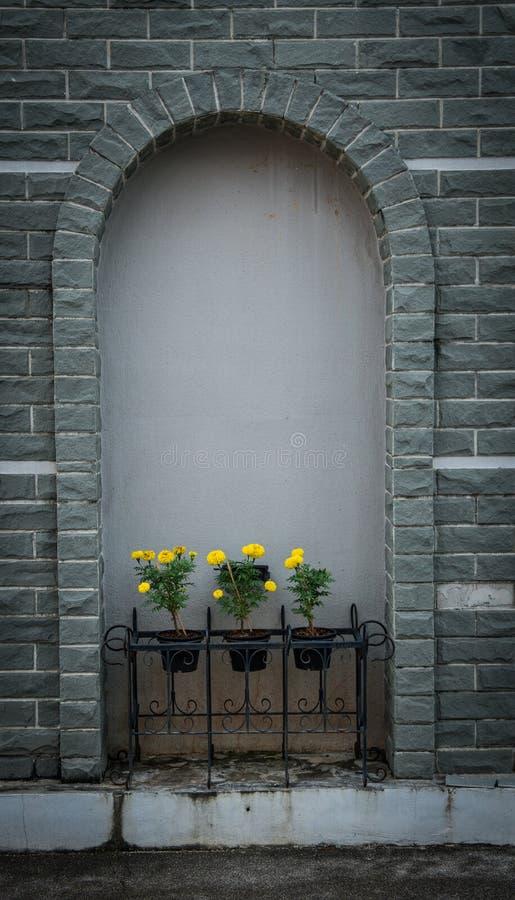 Weißes Fenster der Weinlese auf grauer Backsteinmauer und Ringelblume blühen in f stockbild