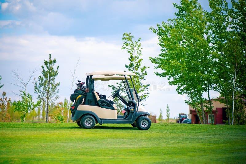 Weißes Golfauto auf dem grünen Golffeld am schönen sonnigen Tag stockbild