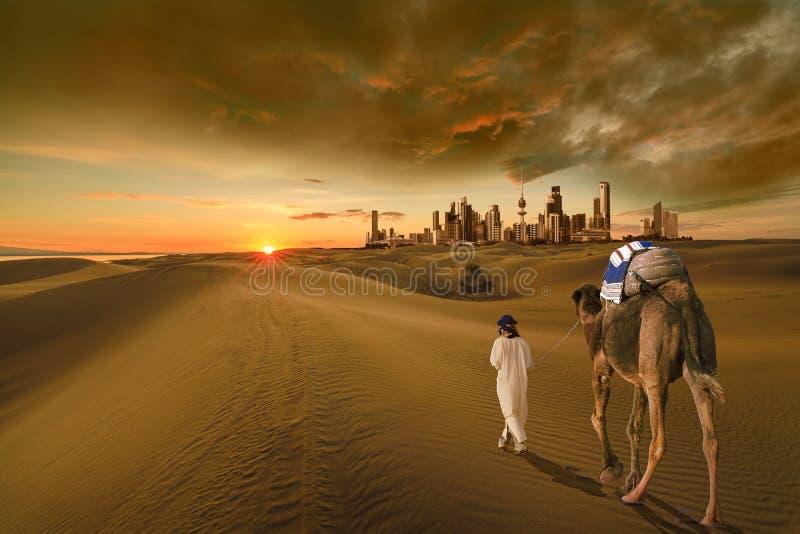 Weißes Kamel in der Kuwait-Wüste lizenzfreies stockfoto