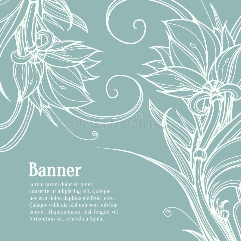 Weißes Lotus-Blumen Auf Blauem Hintergrund Hand Vektor Abbildung ...