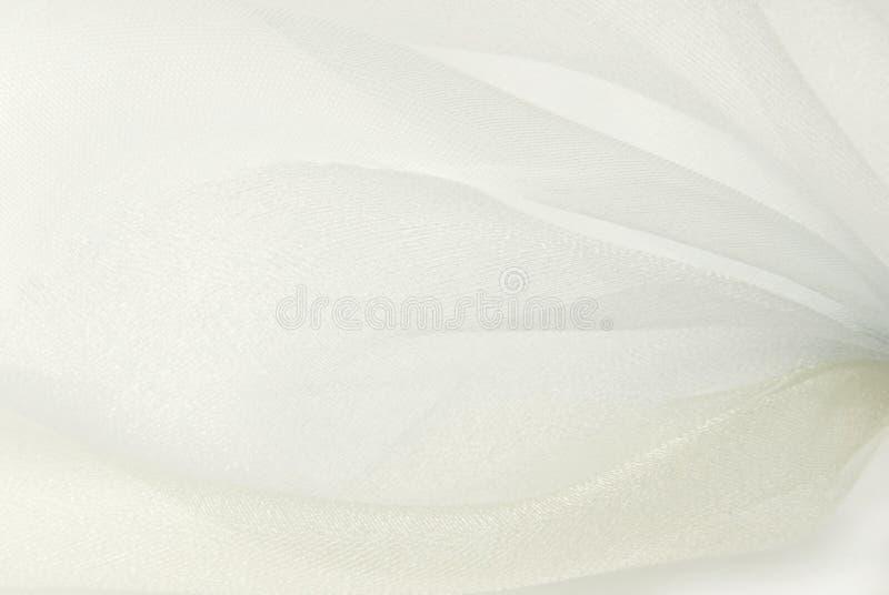 Weißes Organzagewebemakro lizenzfreies stockbild