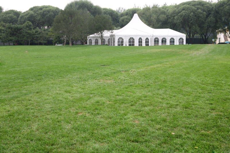 Weißes Partyzelt auf Rasen stockfotografie