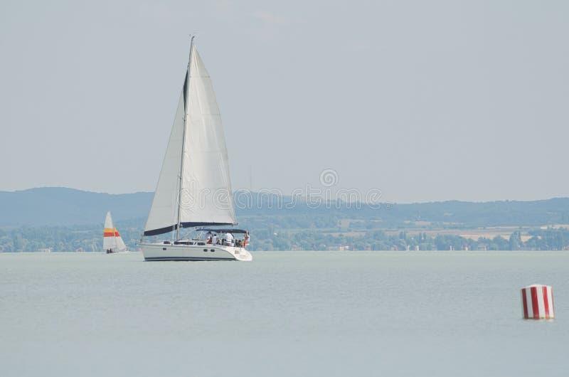 Weißes Segelboot auf See Balaton lizenzfreies stockbild