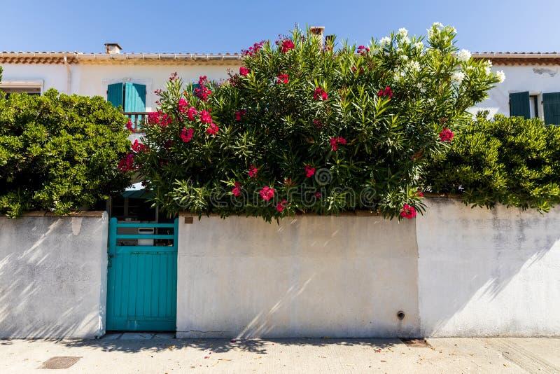 weißes Wandtürkistor und schöne blühende Blumen nahe traditionellen Häusern lizenzfreie stockfotografie