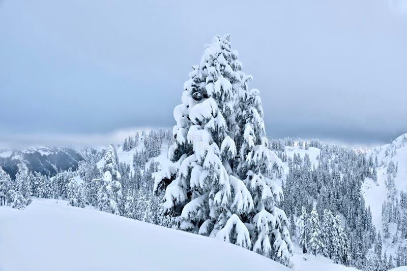 Weißes Weihnachten Berg-Bäckerskiort nach Schneefällen stockbilder