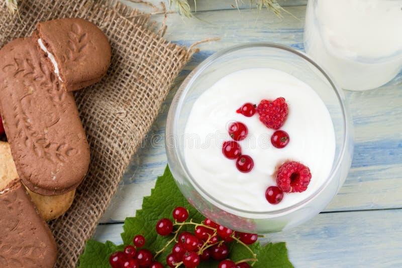 Weißes yogurth mit Korinthe und Himbeeren lizenzfreies stockbild