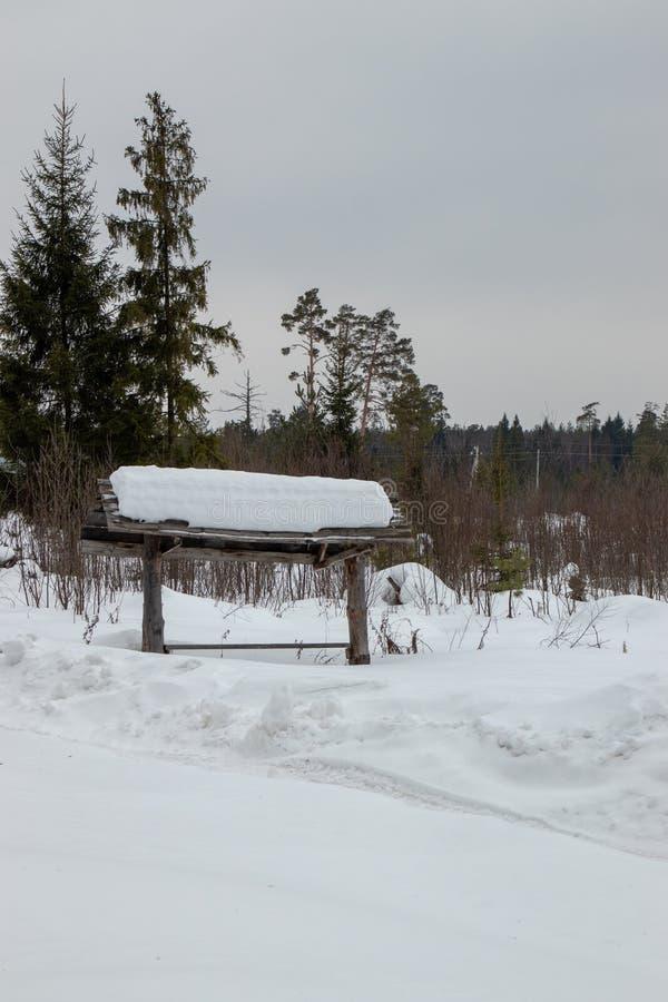 Weißschneebewald in Russland lizenzfreie stockbilder