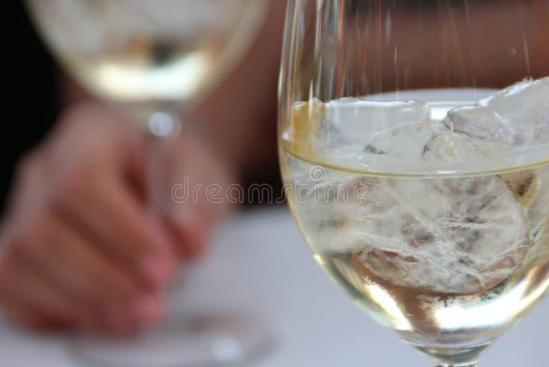 Weißwein auf den Felsen lizenzfreies stockbild