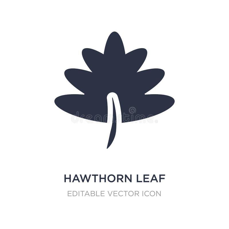 Weißdornblattikone auf weißem Hintergrund Einfache Elementillustration vom Naturkonzept lizenzfreie abbildung
