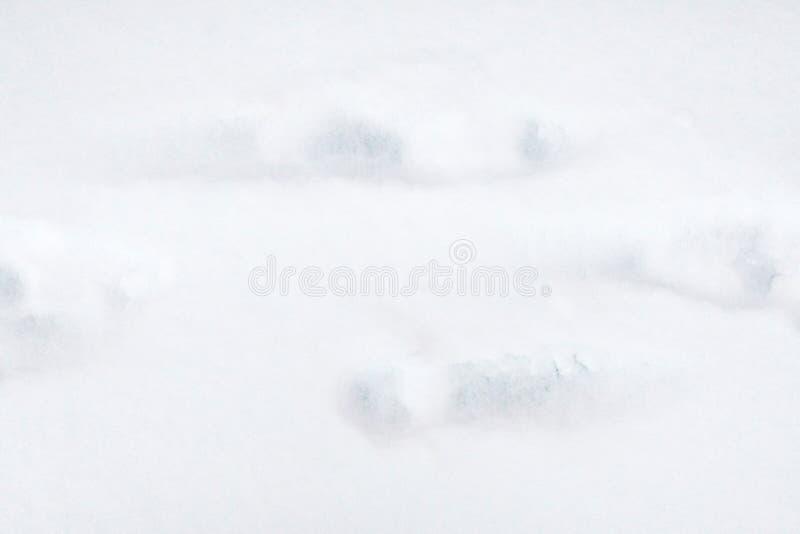 Weiße Schneeoberfläche mit Mannabdrücken stockbilder