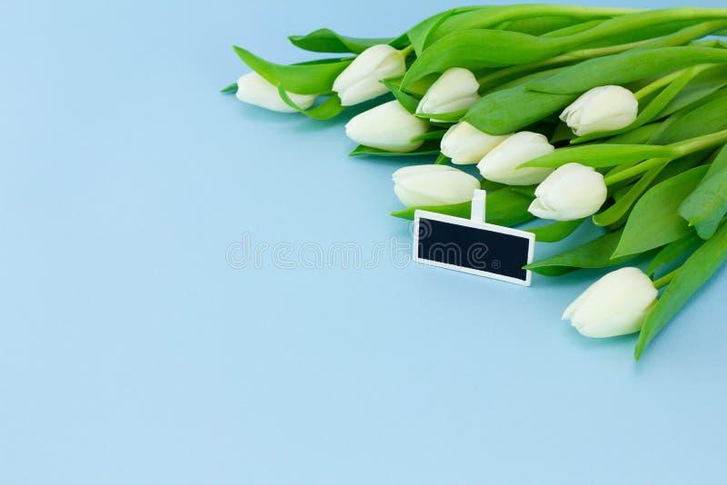 Weiße Tulpen und Geschenkumbau auf einem blauen Hintergrund, Kopienraum Feiertagsfrühlingskonzept, der Tag der internationalen Fr stockfotos