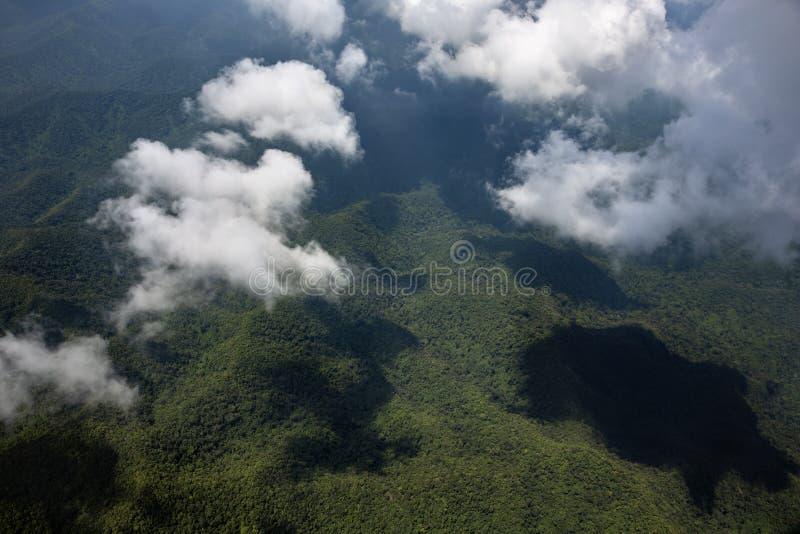 Weiße Wolke, die voll über den forrest Berg der Draufsicht der Bäume schwimmt lizenzfreie stockbilder