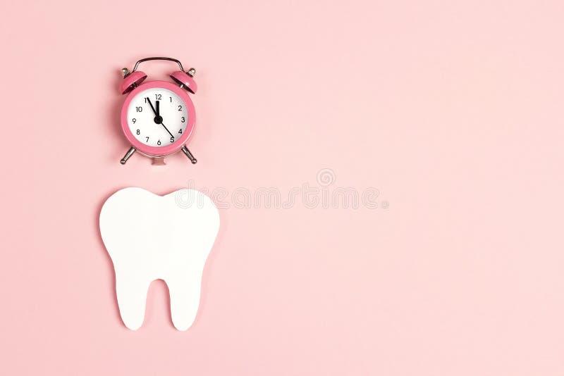 Weißer Zahn mit Wecker auf rosa Hintergrund Zeit zur Zahngesundheit Zahnarzttageskonzept lizenzfreie stockfotografie