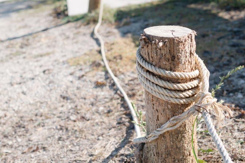weißes Seil gebunden am Stumpf, um die Grenze zu blockieren stockbilder