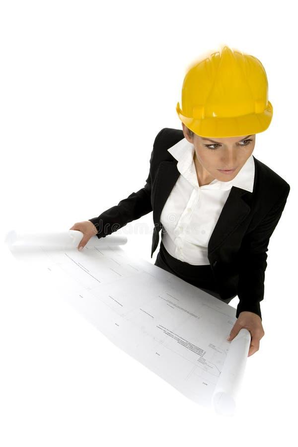 Weibliche Architektenholdinglichtpausen lizenzfreie stockfotos