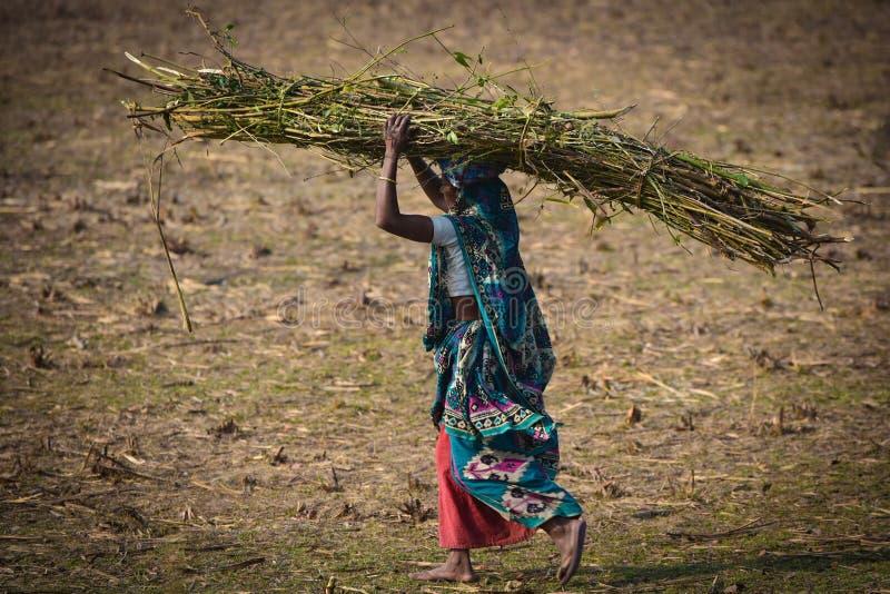 Weibliche arme Arbeitskräfte von Bangladesch lizenzfreies stockfoto
