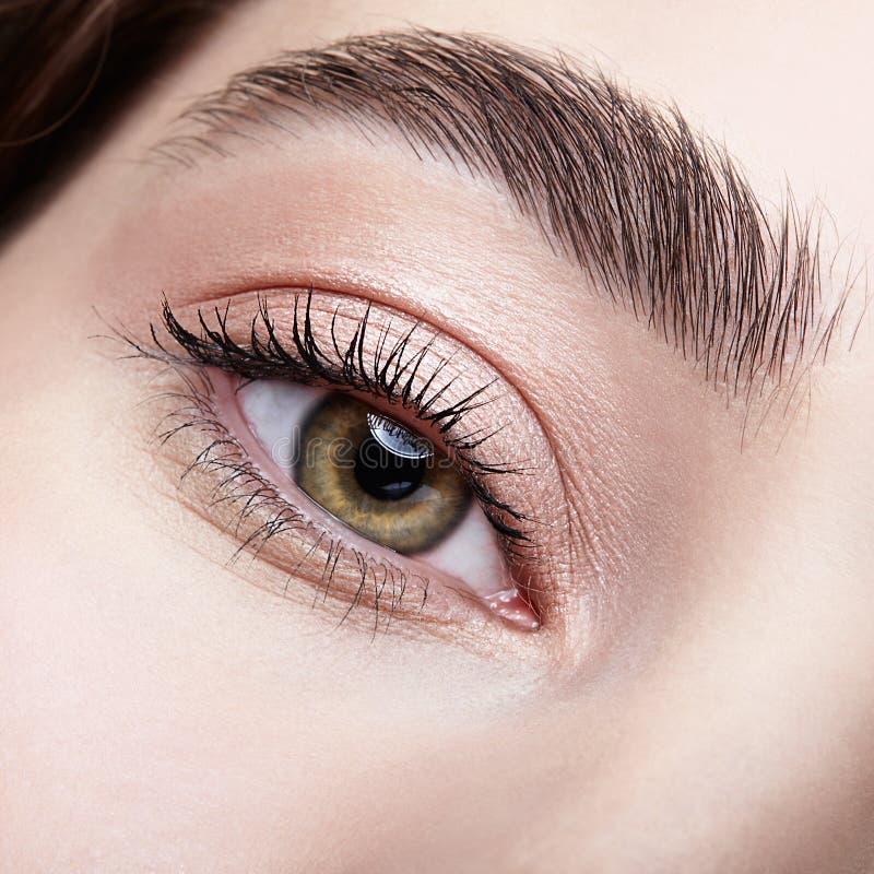 Weibliche Augenzone und -brauen mit Tagesaktmake-up lizenzfreies stockfoto