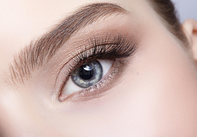 Weibliche Augenzone und -brauen mit Tagesmake-up stockfotografie