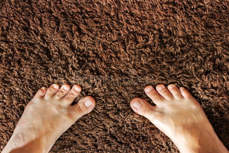 Weibliche Beine Die Füße der Frauen auf dem Teppich stockbilder