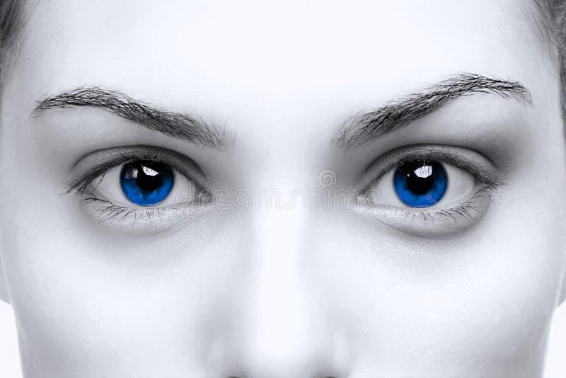 Weibliche blaue Augen stockbild