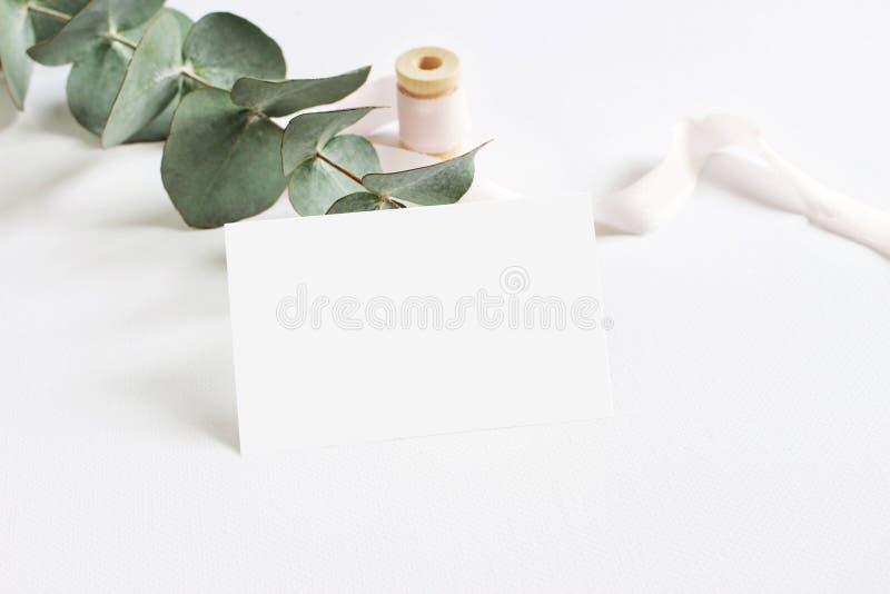 Weibliche Briefpapiermodellszene mit einer Papiergrußkarte, Spule des rosa Seidenbands und Eukalyptus des silbernen Dollars stockfoto