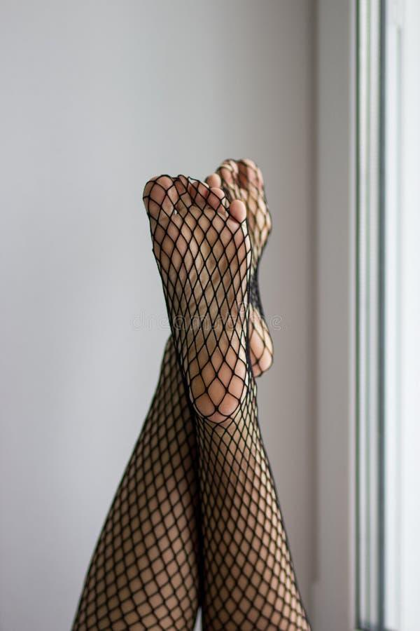 Weibliche Füße und Sohlen im schwarzen Fischnetz auf Fensterhintergrund stockbilder